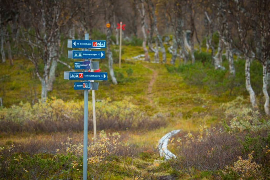 En ledskylt med fem olika platser utpekade står vid en led framför en fjällbjörkskog.