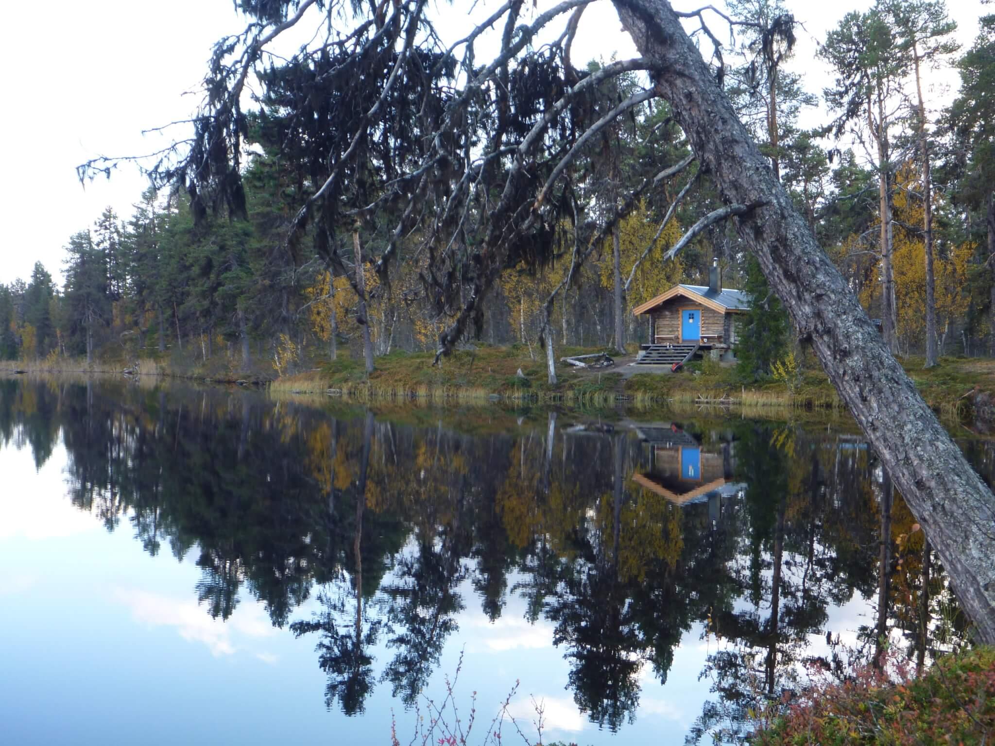 Bjönkojan. En koja vid sjö. En lutande tall står i förgrunden.