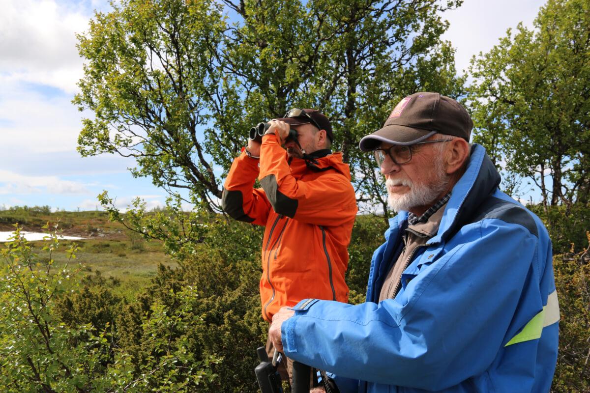 Martin och Sören kollar efter fåglar på fjället.